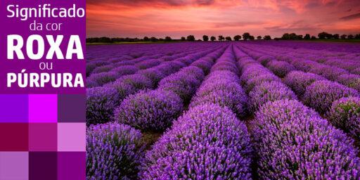 Significado da cor roxa ou púrpura