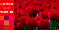 Significado da cor vermelha